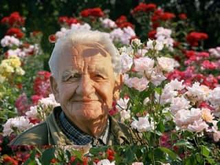 Egypercesek a rózsáról - Márk Gergely