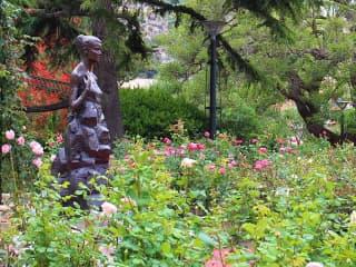 Egypercesek a rózsáról - Princess Grace Rose Garden